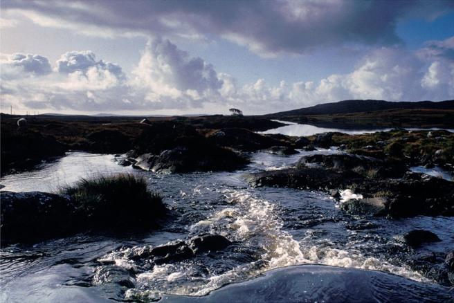 Fergus Bourke_Water Run